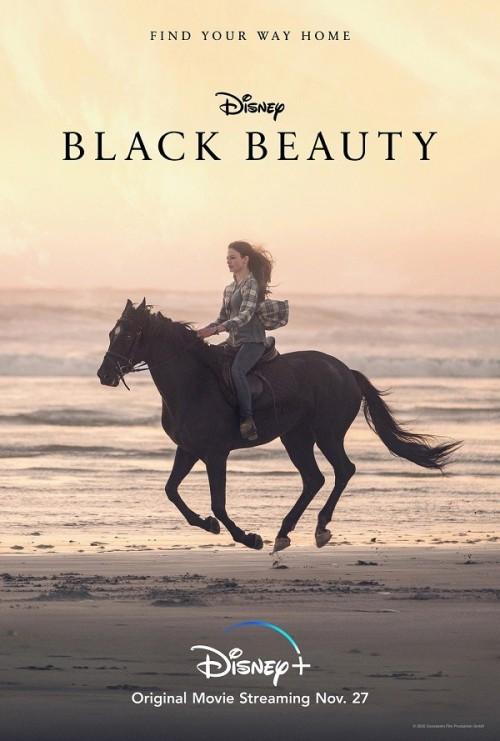 7909.Black Beauty