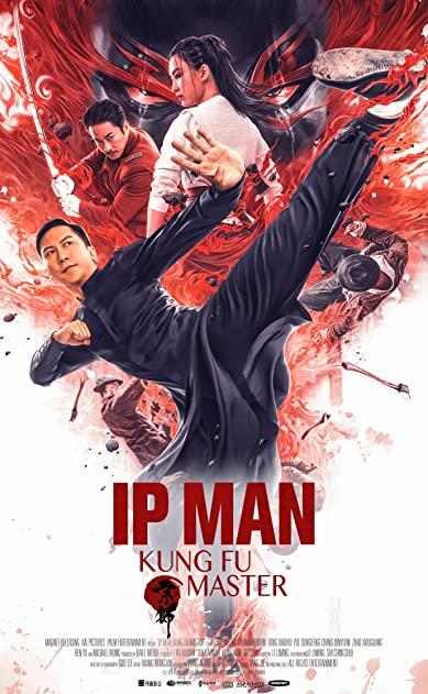 7922.Ip Man Kung Fu Master